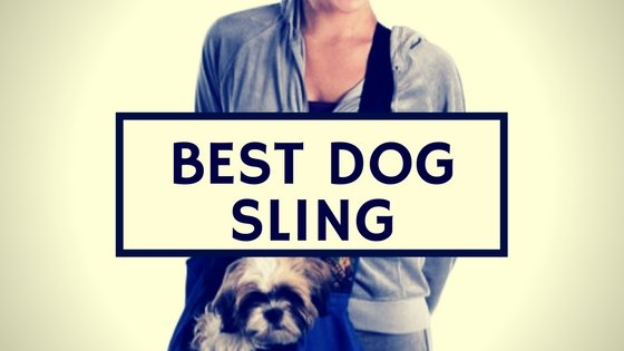 Best Dog Sling Carrier And Harness Reviews 2020 [Video Inside]
